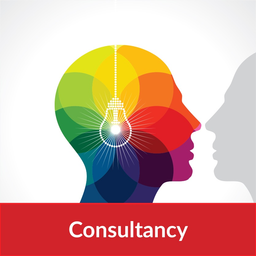 Consultancy Final.jpg
