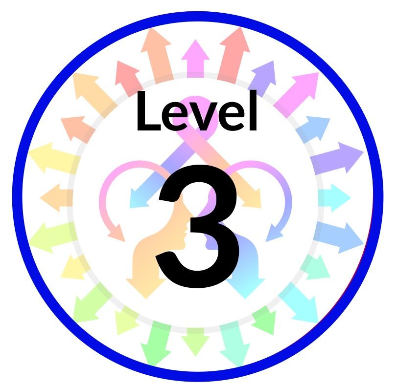 Level 3.jpg